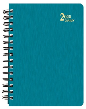 2020 Shimmer Daily Planner 6 x 8